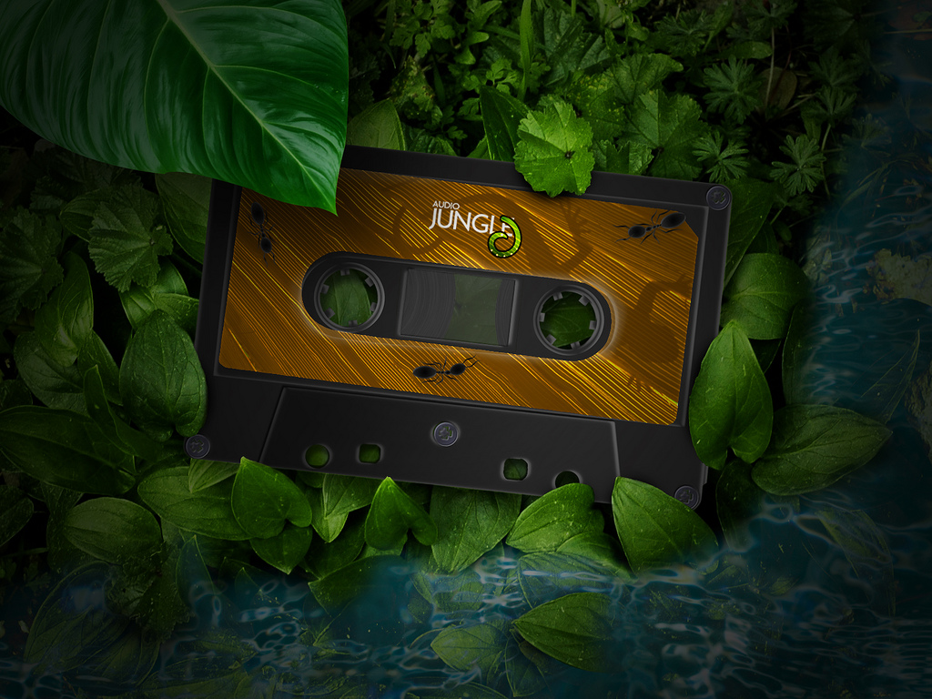 audiojungle-compact-cassette-1024×768-3d-wallpaper |