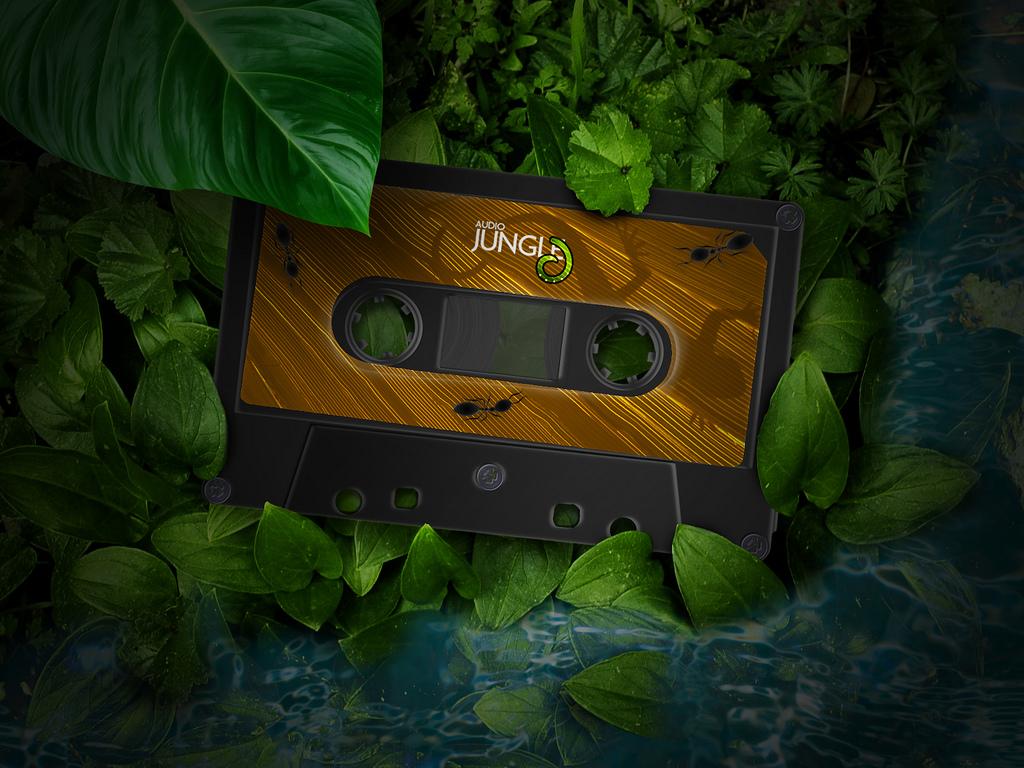 audiojungle-compact-cassette-1024×768-3d-wallpaper  